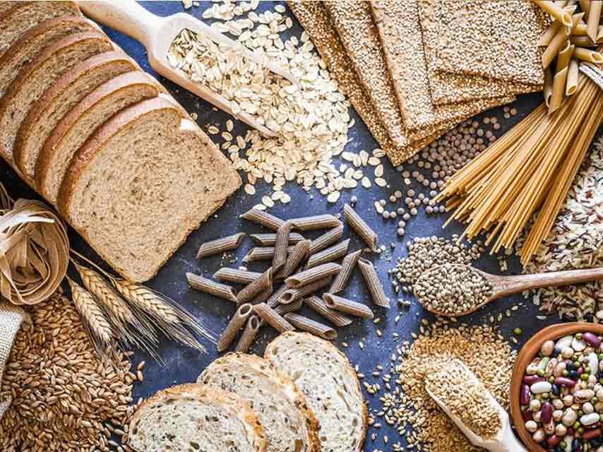 fibre and starch